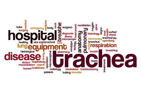 intubation: Trachea word cloud concept Stock Photo