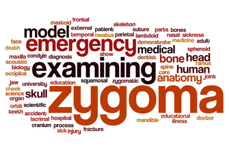 lacrimal: Zygoma word cloud concept