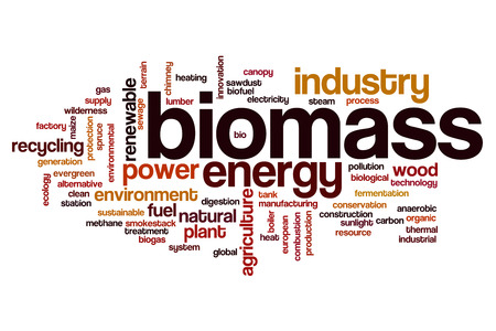 biomasa: Biomass word cloud concept