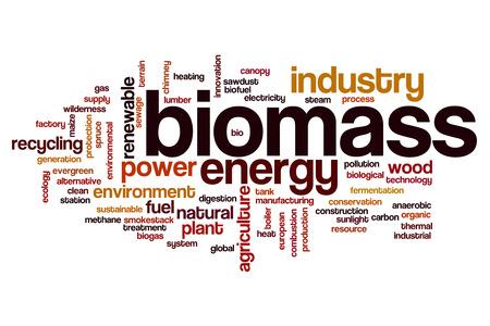biomasa: La biomasa concepto de nube de palabras Foto de archivo