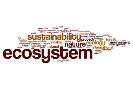 ecosistema: Ecosistemas del concepto de nube de palabras Foto de archivo