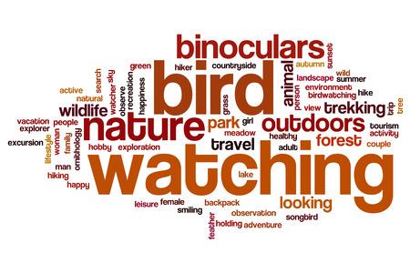 bird watching: Bird watching word cloud concept
