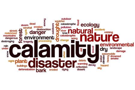calamity: Calamity word cloud concept
