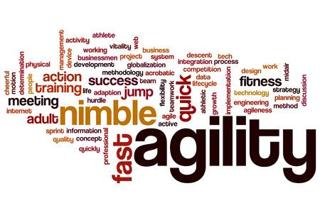 Agility word cloud concept