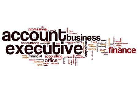 account executive: Account executive word cloud concept