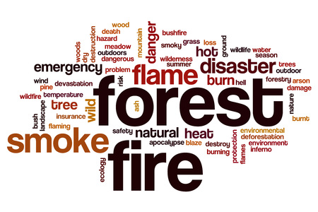 arson: Forest fire word cloud concept Stock Photo