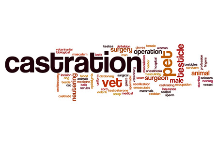 testicle: Castration word cloud concept