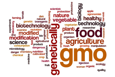 genetically modified crops: GMO word cloud concept Stock Photo