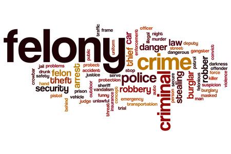 felony: Felony word cloud concept