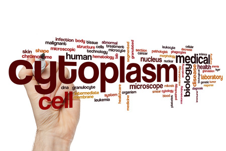 Cytoplasm word cloud concept Stock Photo