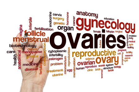 ovaries: Ovaries word cloud concept
