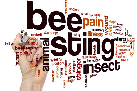 sting: Bee sting word cloud concept