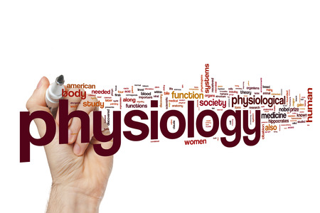 Physiology word cloud Stock Photo