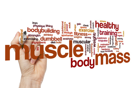 muscle gain: Muscle mass word cloud concept