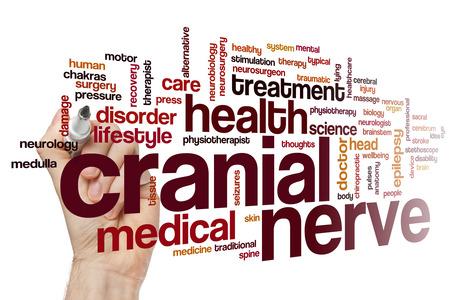 Cranial nerve word cloud concept