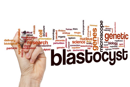 Blastocyst word cloud concept Stock Photo