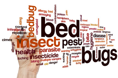 bugs: Bed bugs word cloud concept Stock Photo