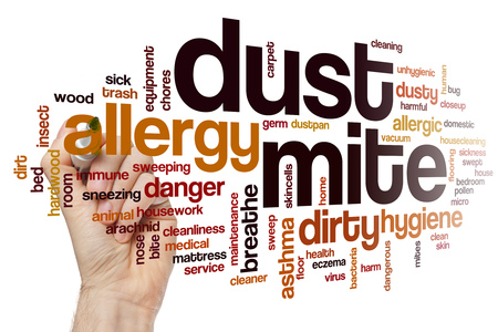 Dust mite word cloud concept Stock Photo