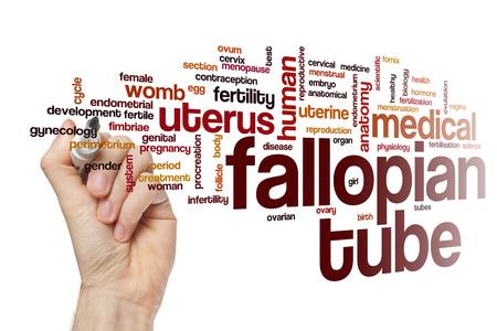 fimbriae: Fallopian tube word cloud concept