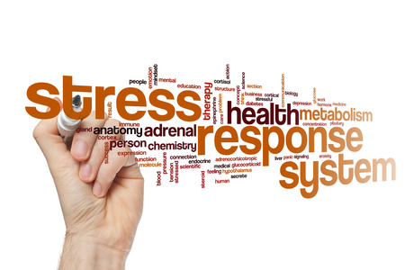 hipofisis: Stress response system word cloud