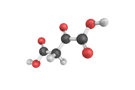 intermediate: 3d structure of Oxaloacetic acid (also known as oxalacetic acid), a crystalline organic compound. It is a metabolic intermediate in many processes that occur in animals. Stock Photo