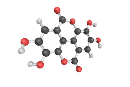 3d structure of Ellagic acid, a natural phenol antioxidant found in numerous fruits and vegetables. The antiproliferative and antioxidant properties have potential health benefits. Stock Photo