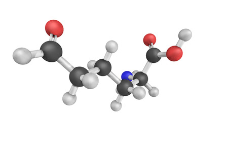 derivative: 3d structure of Allysine, a derivative of lysine, used in the production of elastin and collagen. It is essential in the crosslink formation that stabilizes collagen and elastin.