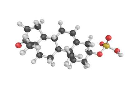 3d structure of Dehydroepiandrosterone sulfate (DHEA-S), also known as prasterone sulfate, a naturally occurring, endogenous androstane steroid and neurosteroid.