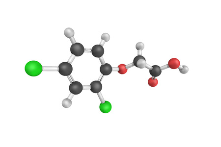 3d structure of 2,4-Dichlorophenoxyacetic acid (usually called 2,4-D), an organic compound which is a systemic herbicide that selectively kills most broadleaf weeds.