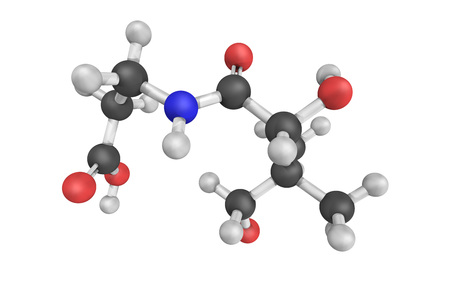 3d structure of Vitamin B5, also called Pantothenic acid, a water-soluble vitamin. It is an essential nutrient. The anion is called pantothenate.