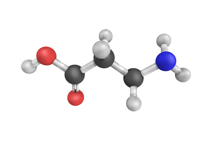 vivo: 3d structure of Beta-alanine, a naturally occurring beta amino acid, which is an amino acid in which the amino group is at the beta-position from the carboxylate group.