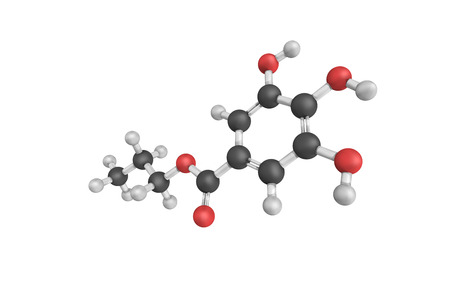 free radicals: 3d structure of Propyl gallate, an ester formed by the condensation of gallic acid and propanol. Since 1948, this antioxidant has been added to foods containing oils and fats to prevent oxidation.