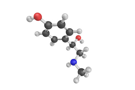 3d structure of Synephrine, an alkaloid, occurring naturally in some plants and animals. p-Synephrine and m-synephrine are known for their longer acting adrenergic effects compared to norepinephrine.