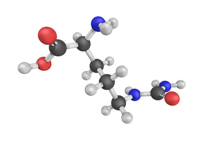 3d structure of Citrulline, an alfa-amino acid. It is a key intermediate in the urea cycle, the pathway by which mammals excrete ammonia.