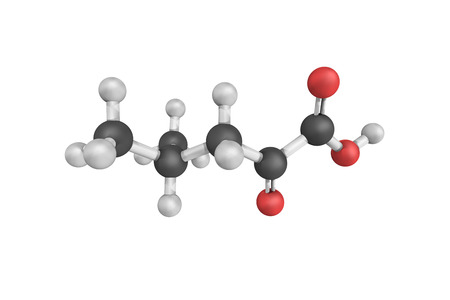 intermediate: 3d structure of 4-Methyl-2-oxovaleric acid, also known as alpha-Ketoisocaproic acid, an intermediate in the metabolism of leucine.