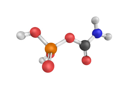 Carbamoyl phosphate, an anion of biochemical significance. In land-dwelling animals, it is an intermediary metabolite in nitrogen disposal through the urea cycle and the synthesis of pyrimidines. Stock Photo