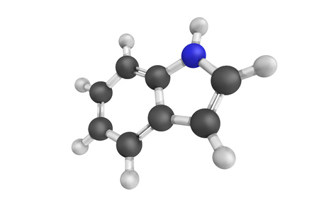 Indole regulates various aspects of bacterial physiology, including spore formation, plasmid stability, resistance to drugs, biofilm formation, and virulence. Can be produced by a variety of bacteria. Banco de Imagens - 70234850