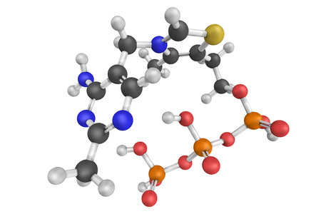 Thiamine triphosphate, a biomolecule found in most organisms including bacteria, fungi, plants and animals. Chemically, it is the triphosphate derivative of the vitamin thiamine. Stock Photo
