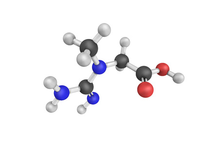 Creatine, a nitrogenous organic acid that occurs naturally in vertebrates and helps supply energy to all cells in the body, primarily muscle. Its content can be used as an indicator of meat quality.