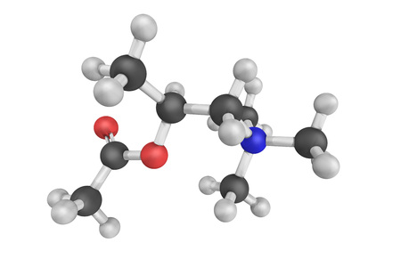 Methacholine in chloride form. A synthetic choline ester that acts as a non-selective muscarinic receptor agonist in the parasympathetic nervous system.