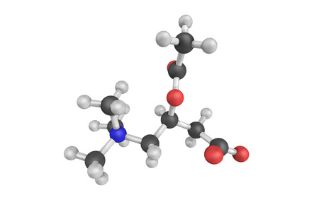 Acetyl-L-carnitine, naturally produced by the body, although it is often taken as a dietary supplement. An acetylated form of L-carnitine. Stock Photo