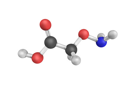 vivo: Aminooxyacetic acid,  indicated as a useful tool to study regional GABA turnover in rats. It is a compound that inhibits GABA-T activity in vitro and in vivo, leading to less GABA being broken down.