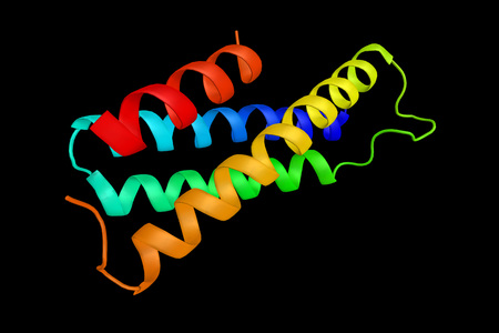 SPG20, a protein that contains a MIT (Microtubule Interacting and Trafficking molecule) domain. May be involved in endosomal trafficking, microtubule dynamics, or both functions. 3d rendering.