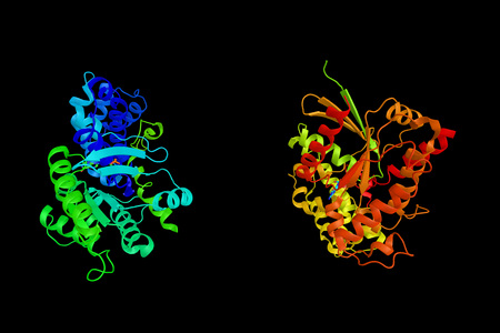 nucleotide: Guanine nucleotide-binding protein G(i), alpha-1 subunit is a protein that in humans is encoded by the GNAI1 gene, and is affected by nicotine. 3d rendering. Stock Photo