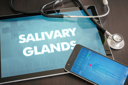 salivary: Salivary glands (gastrointestinal disease related) diagnosis medical concept on tablet screen with stethoscope.