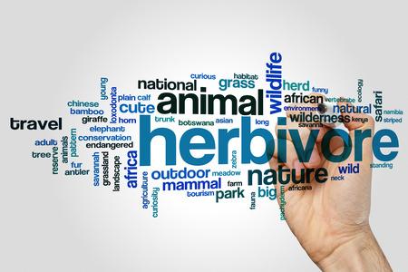 herbivore: Herbivore word cloud concept