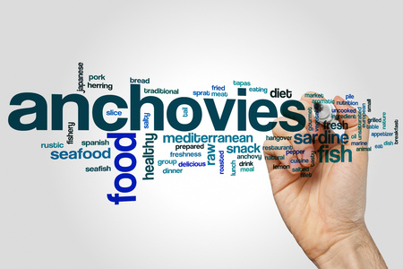 Anchovies word cloud concept on grey background.