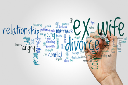 ex wife: Ex wife word cloud concept on grey background.