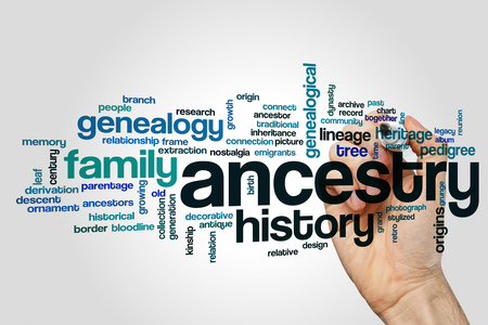 Ancestry word cloud concept on grey background. Stock Photo