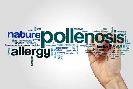 Pollenosis word cloud concept on grey background Stock Photo